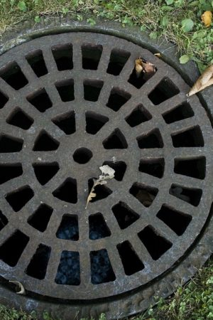 Sewer and Drain