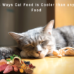 5 Ways Cat Food is Cooler than any Food
