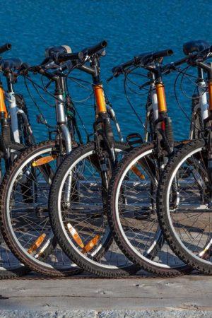 bike-rental-shop